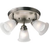 Renovations Directional Ceiling Light