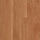Woodbourne 3 1/4&quot; Solid Oak Golden