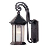 Radcliffe  Outdoor Wall Lantern in Oily Bronze
