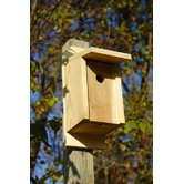 Eastern Blue Bird Bird House