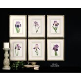 Purple Regal Wall Art (Set of 6)