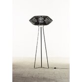 V One Light Floor Lamp in Black