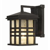 Outdoor 10&quot;  Wall Lantern