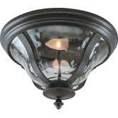Frances Exterior Flush Mount in Oiled Bronze