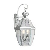 Monterey Outdoor Wall Lantern in Brushed Nickel