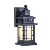 Mirror Lake  Outdoor Wall Lantern in Bronze