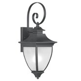Hillsdale Outdoor Wall Lantern in Black