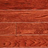 Gevaldo 3/4&quot; x 3&quot; White Oak in Cherry