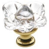 "1.19"" x 1.19"" Crystal Cabinet Knob in Polished Brass"