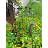 Adjustable Height Trellis