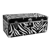 "Perfect Storage 30"" Trunk"