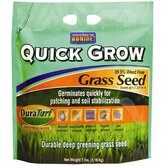 Quick Grow Grass Seed