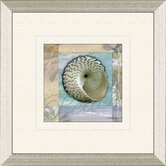 Restful Shell B Framed Art