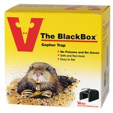 The Box Gopher Trap