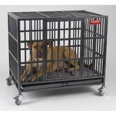 Empire Dog Crate