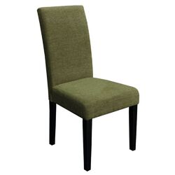 Aprilia Parsons Chair in Green (Set of 2)