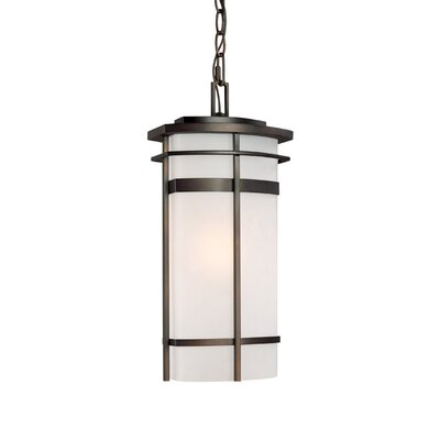 Capital Lighting Lakeshore 1 Light Outdoor Hanging Lantern
