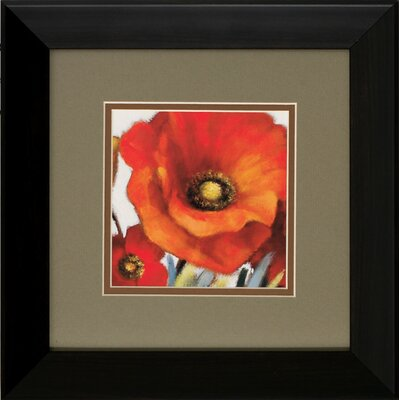 Propac Images Poppy Splendor I / II Framed Art (Set of 2)