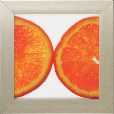 Propac Images Fruit I / II / III / IV Framed Art (Set of 4)