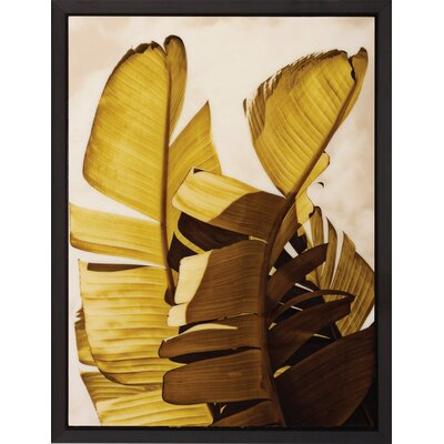 Propac Images Palm Fornds III / VI Wall Art (Set of 2)