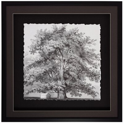 Propac Images Silver Majesty I Wall Art