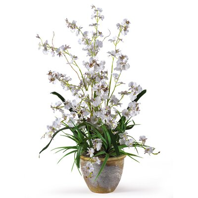 Nearly Natural Dancing Lady Silk Orchid Arrangement in White