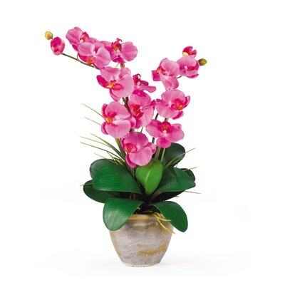 Nearly Natural Double Phalaenopsis Silk Orchid Arrangement in Dark Pink