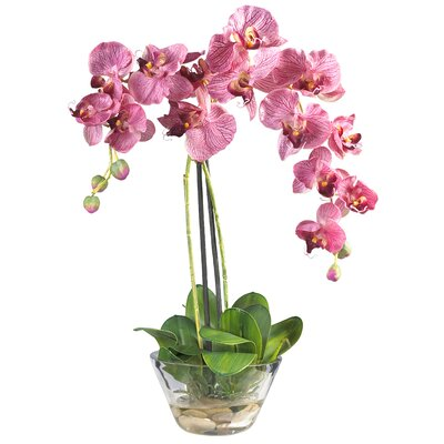 Nearly Natural Phalaenopsis Silk Orchid Arrangement in Purple with Glass Vase