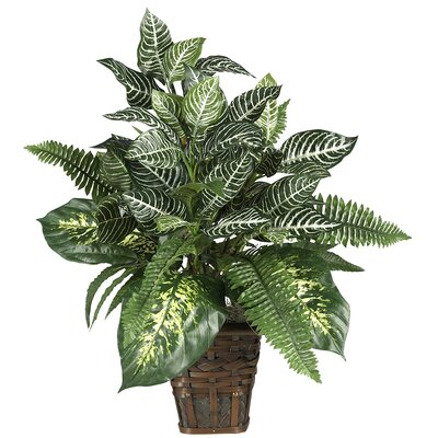 Nearly Natural Silk Mixed Greens Zebra Plant with Wicker in Green