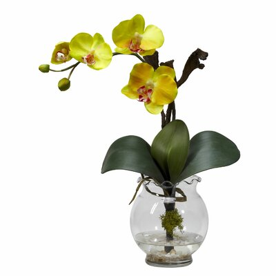 Nearly Natural Mini Phalaenopsis with Fluted Vase Silk Flower Arrangement in Yellow
