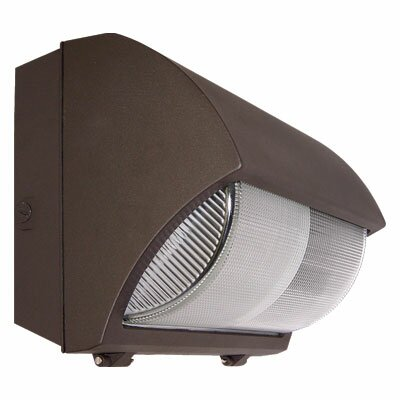 Barron Lighting Induction Lighting 277 Volts Large One Light Outdoor Wall Light in Bronze