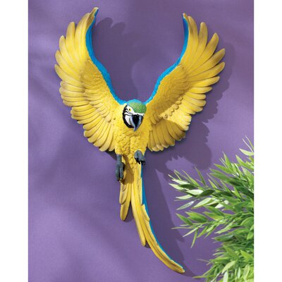 Phineas the Flapping Macaw Bird Wall Sculpture (Set of 2)