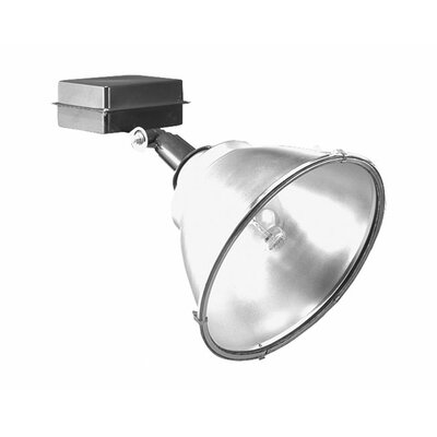 Deco Lighting 400W MHPS MT Flood Light in Bronze