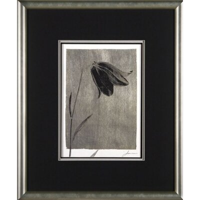 Phoenix Galleries Silver Stem 1 Framed Print