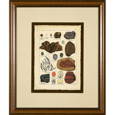 Phoenix Galleries Minerals 4 Framed Print