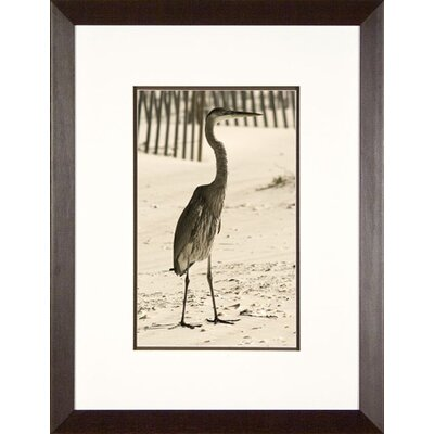 Phoenix Galleries Watching for Fish Framed Print