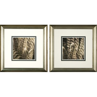 Phoenix Galleries Moonglow Framed Prints