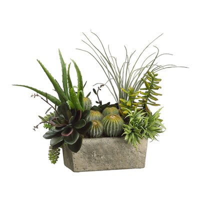 "Tori Home 18"" Succulents Plant Arrangement with Terra Cotta Pot"