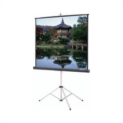 "Da-Lite Matte White Gray Carpeted Picture King w/ Keystone Eliminator - AV Format 50"" x 50"""