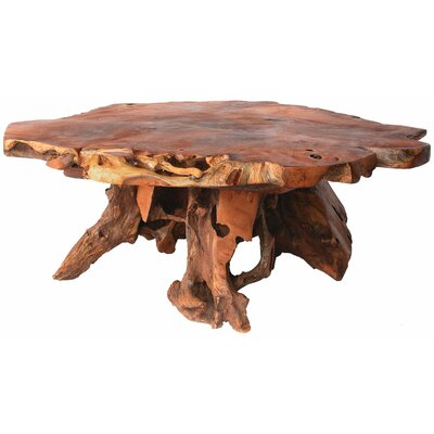 Back To The Roots Bighorn Root Coffee Table