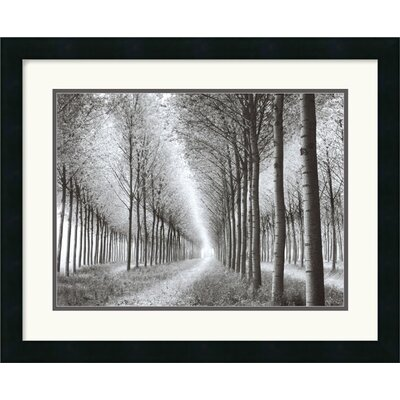 "Amanti Art Tree Parade (c. 2003) by Chip Forelli Framed Fine Art Print - 18"" x 22"""