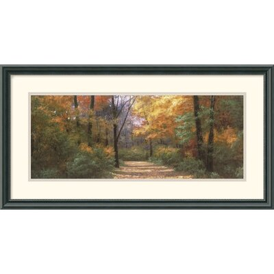 Autumn Road Panel Framed Art Print by Diane Romanello