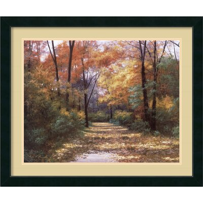"Amanti Art Autumn Road by Diane Romanello, Framed Print Art - 28.87"" x 34.87"""