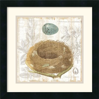 Amanti Art Botanical Nest III Framed Print by  MHershey