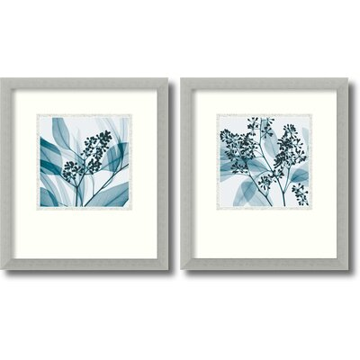 Silver Eucalyptus Framed Print by Steven N. Meyers (Set of 2)