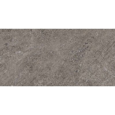 "American Olean Allora 18"" x 36"" Unpolished Porcelain Tile in Argento"
