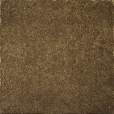 "Emser Tile Genoa 16"" x 16"" Floor Tile in Pinelli"