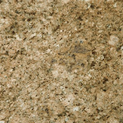 "Emser Tile Natural Stone 12"" x 12"" Granite Tile in Giallo Veneziano"