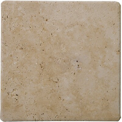 "Emser Tile Natural Stone 12"" x 12"" Tumbled Travertine Tile in Mocha"