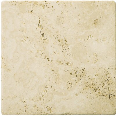 "Emser Tile Natural Stone 8"" x 8"" Tumbled Travertine Tile in Ancient Beige"